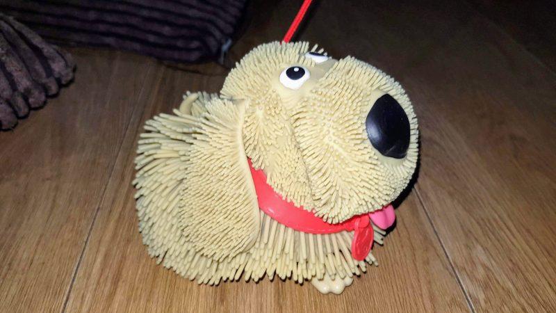 Soggy Doggy friend Dizzy toy dog john adams ideal raw childhood review